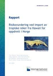 Risikovurdering ved import av tropiske reker fra Hawaii for oppdrett i