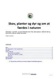 Skov, planter og dyr og om at færdes i naturen - Danske Torpare