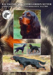 RAcEKOMPENDIUM FOR GORDON sEttER - Kennel Aaen