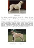 Irsk Ulvehunde i DK - Myndeklubben - Page 3