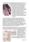 Hjemkomst med GPS - Dansk Brevduesport - Page 6
