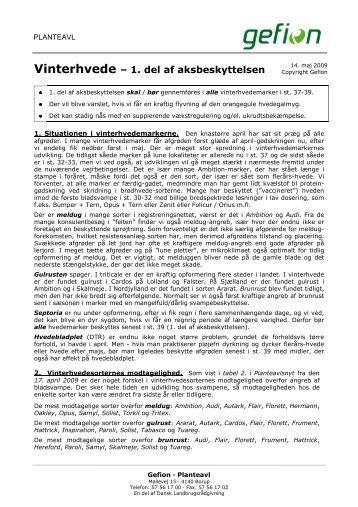 Vinterhvede - 1. del af aksbeskyttelsen.140509.haa - Planteavlsnyt