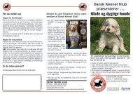 DKK præsenterer Glade og dygtige hunde - Dansk Kennel Klub