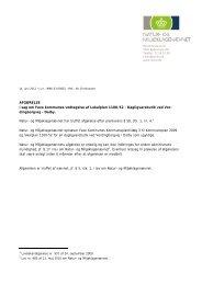 NMKN afgørelse om lokalplan 1100-52 Netto i Dalby - Faxe Kommune