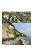 Rapport om den danske flora og fauna - Klimatilpasning - Page 5