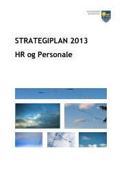 STRATEGIPLAN 2013 HR og Personale - Odsherred Kommune