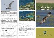 Gyldensteen folder - Aage V. Jensens Fonde