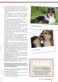 Racehunden - Dansk Racehunde Union - Page 7