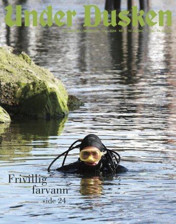 Frivillig farvann - Under Dusken