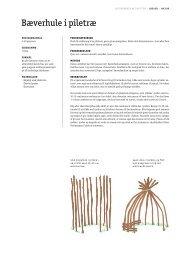 Udfordrende aktiviteter for bæver - Spejdernet