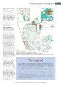 Tørvens klimabalance - Aktuel Naturvidenskab - Page 2