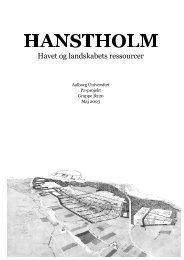 Rapporten - Søren Højmark Rasmussen