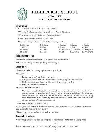 vacation homework of dps durg