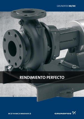ReNdimieNto peRfecto - Grundfos