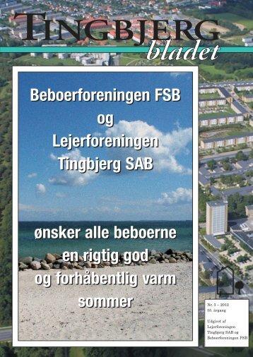 31915_Tingbjerg 3-12 - Tingbjerg Forum