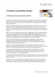 Innovation og udvikling i klynger - Cubion