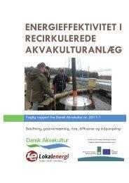 energieffektivitet i recirkulerede akvakulturanlæg - AquaCircle