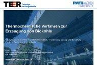 Thermochemische Verfahren zur Erzeugung von Biokohle - ANS eV