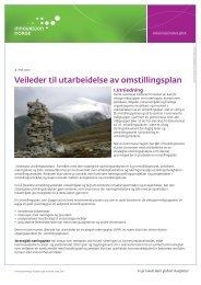 Veileder i utarbeidelse av omstillingsplan - Innovasjon Norge