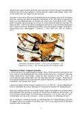 Plejaderne og forhistoriske kulturer (PDF) - Holisticure - Page 5