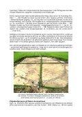 Plejaderne og forhistoriske kulturer (PDF) - Holisticure - Page 7