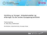 Utvikling av klynger: Arbeidsmodeller og ... - Innovasjon Norge