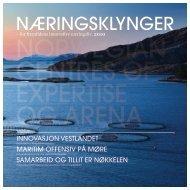 for fremtidens innovative næringsliv. 2010 - Innovasjon Norge