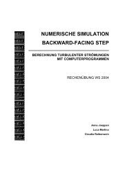 numerische simulation backward-facing step berechnung ...