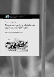 Menneskelige indgreb i danske skarvkolonier 1994-2001.pmd