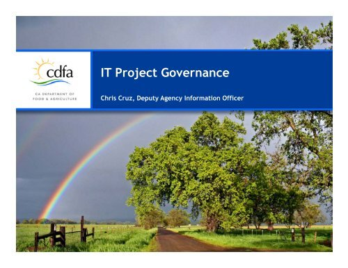 IT Project Governance