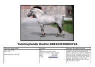 Tulstruplunds Hudini