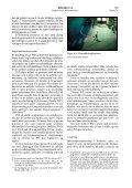 PSTs arbeid med å avdekke og avverge terrorisme - Dagbladet - Page 7