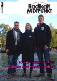 3 2009 endelig - Radikale Venstre