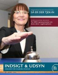 Indsigt & Udsyn nr. 1, 2007 - Region Nordjylland