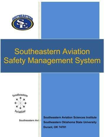 safety critical aviation systems essay We will write a custom essay sample on safety critical aviation systems specifically for you for only $1638 $139/page.