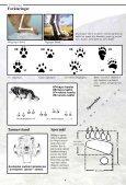 Spor og tegn - NINA - Page 5
