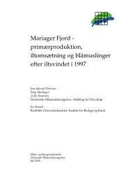 Mariager Fjord - primærproduktion, iltomsætning og blåmuslinger ...
