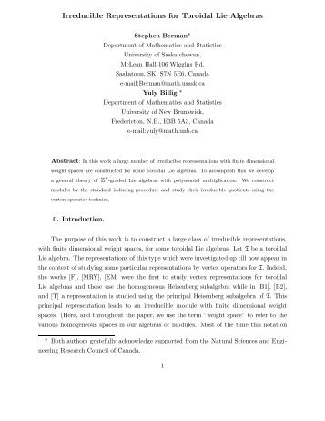 Irreducible Representations for Toroidal Lie Algebras - Mathematics ...