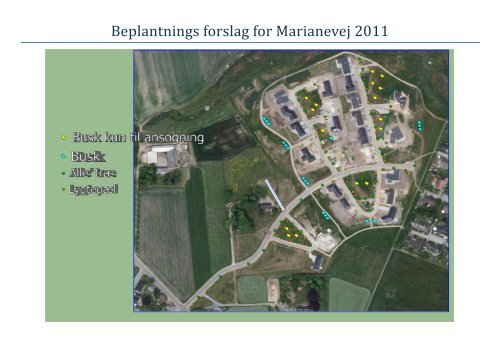 Beplantnings forslag for Marianevej 2011
