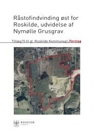 Kommuneplantillæg nr. 15 til Roskilde Kommuneplan