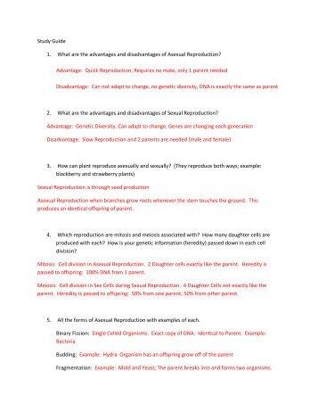 Asexual reproduction quiz pdf