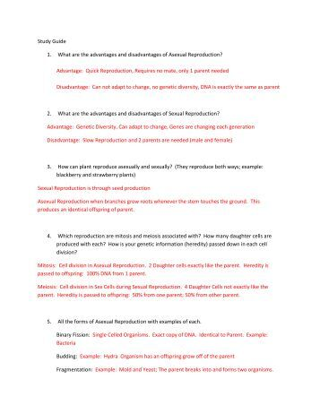 Worksheets Asexual Reproduction Worksheet worksheet asexual reproduction study guide sexual and answers pdf