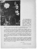 Le Jeune Naturaliste - Page 6