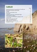 Beskyttelse og benyttelse af natur - nyttig viden for ... - Ærø kommune - Page 4