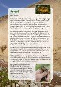 Beskyttelse og benyttelse af natur - nyttig viden for ... - Ærø kommune - Page 5