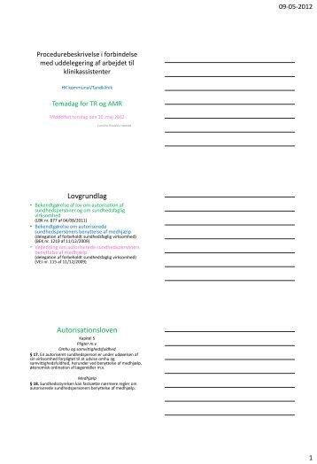 Oplæg af Caroline Bindslev Hørsted.pdf - HK