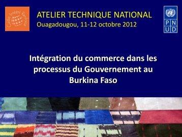Session IV - Coopération internationale - PNUD