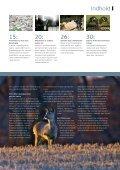 MiljøDanmark nr. 6 2008 - Miljøministeriet - Page 3