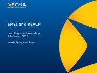SMEs and REACH - ECHA - Europa