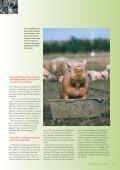 Læs side 26 i MiljøDanmark nr. 1, 2005 - Page 6